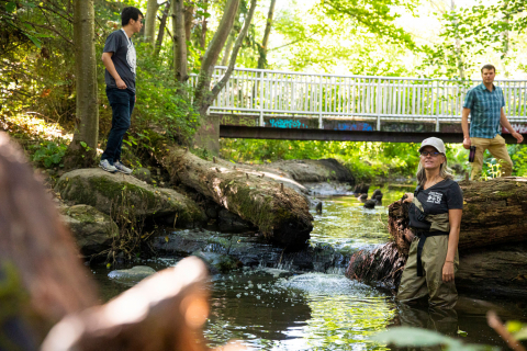 Three researchers stand in or near an urban creek in Seattle, Washington