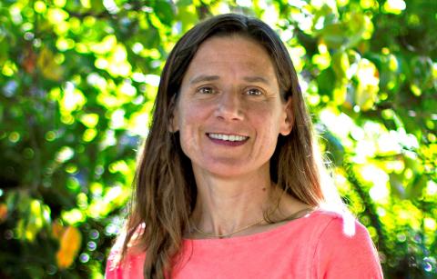 Professor Anne Goodchild
